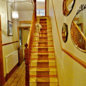 colour neutral staircase